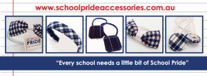 School Hair accessories